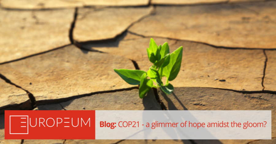 COP21: a glimmer of hope amidst the gloom?